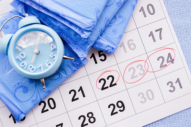 como-funciona-o-ciclo-menstrual-prefolin